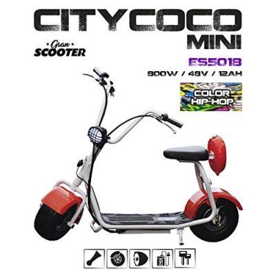 CityCoco MINI 800W