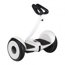 Ecogyro GWay Lite Scooter Eléctrico blanco